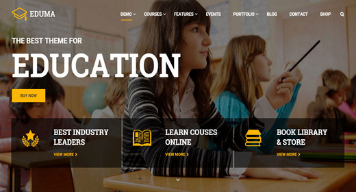 Responsive WordPress Theme for Education