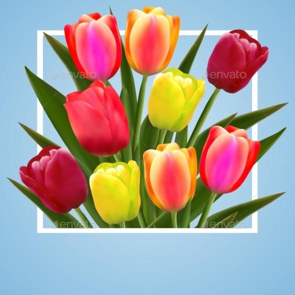 Tulip Flower Design Background Floral Card Art - Flowers & Plants Nature