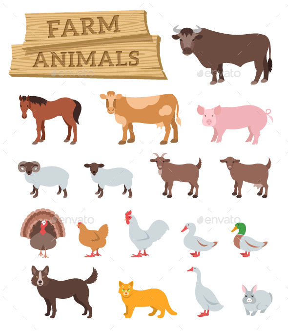 Domestic Farm Animals Flat Illustrations - Animals Characters