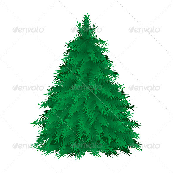 Cconiferous tree - Characters Vectors