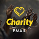Charity - Nonprofit E-newsletter Template - GraphicRiver Item for Sale