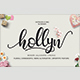 Hollyn Script + Extras Font - GraphicRiver Item for Sale