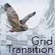 Grid Transition Mattes - VideoHive Item for Sale