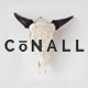 Conall - A Clean & Beautiful Multipurpose Theme Nulled