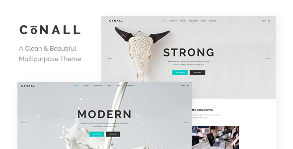 Conall - A Clean & Beautiful Multipurpose Theme
