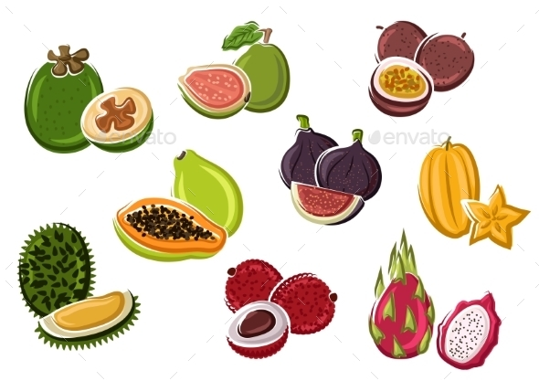 Tropical Fresh Fruits In Cartoon Style - Food Objects