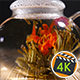 Florescence Of Red Blooming Tea - VideoHive Item for Sale