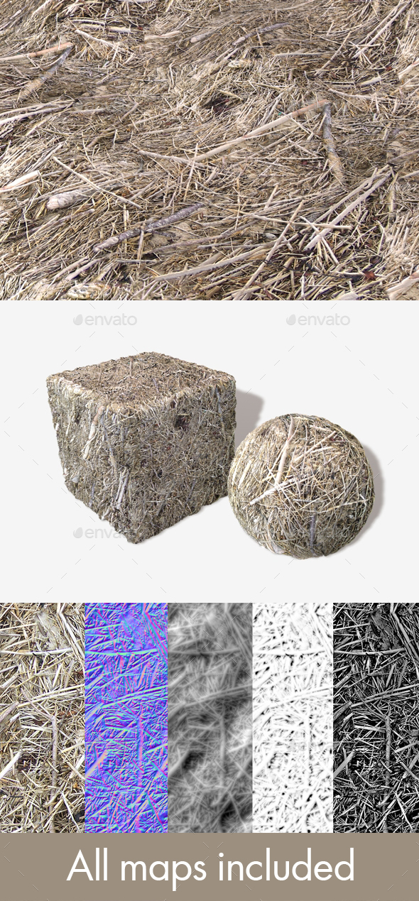 Dead Beach Grass Seamless Texture - 3DOcean Item for Sale