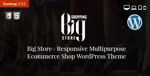 Big Store Multipurpose eCommerce WordPress Theme - WooCommerce eCommerce