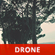 Among the Pine Trees on the Hill - VideoHive Item for Sale