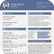 Professional Strict Resume - GraphicRiver Item for Sale