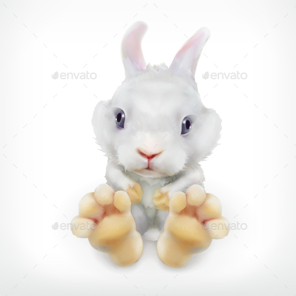 White Rabbit - Animals Characters