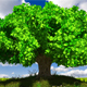 Tree customizable with ground - 3DOcean Item for Sale