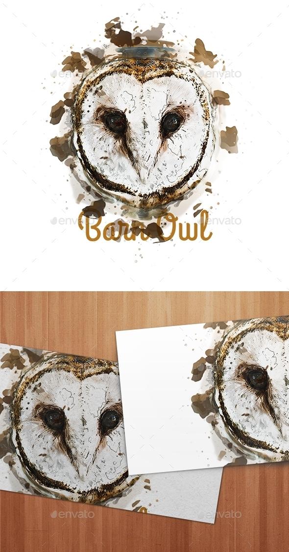 Barn Owl watercolor - Animals Illustrations