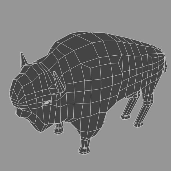 Low Poly Base Mesh Buffalo - 3DOcean Item for Sale