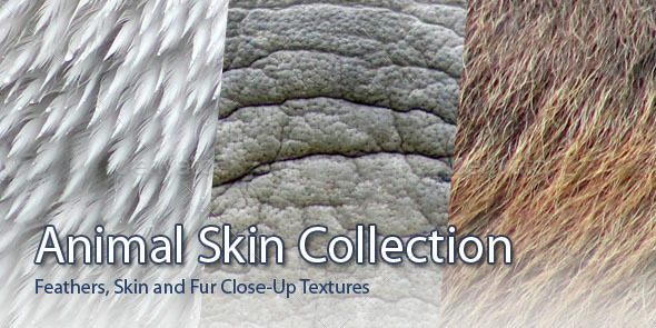 45 Animal Skins - 3DOcean Item for Sale