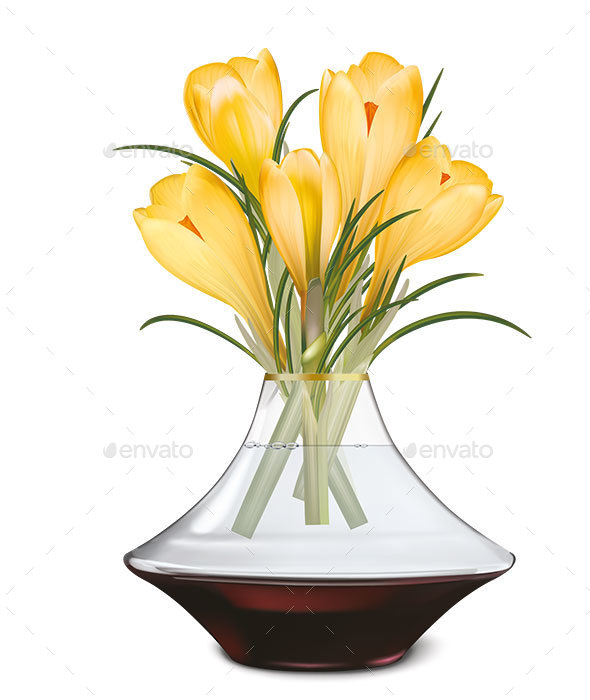 Crocuses Blooming in Vase - Flowers & Plants Nature