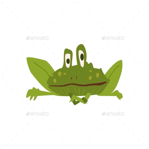 Sitting Toad Flat Cartoon Stylized - Animals Characters