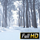 Winter Forest Way - VideoHive Item for Sale
