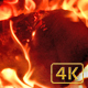 Fire Wood 01 - VideoHive Item for Sale