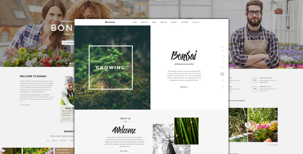 Bonsai – PSD Template for Landscapers & Gardeners