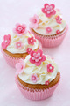Flower cupcakes - PhotoDune Item for Sale