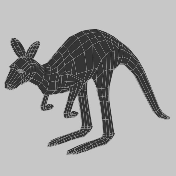 Low Poly Base Mesh Kangaroo - 3DOcean Item for Sale