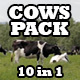 Cows In A Meadow Pack - VideoHive Item for Sale