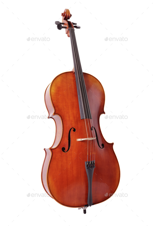 Cello isolated on white background - Stock Photo - Images