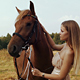 Girl Stroking a Brown Horse In Field - VideoHive Item for Sale