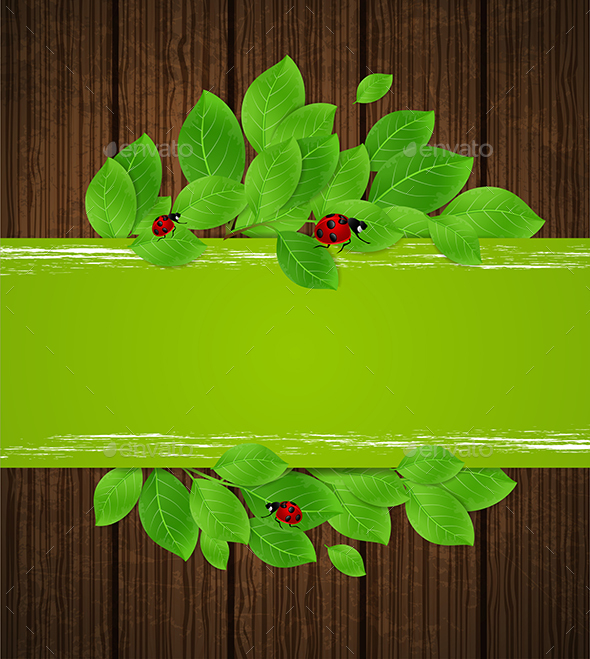 Banner with Leaves and Ladybug - Seasons Nature