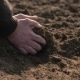Farmer Hands Holding And Pouring Back Organic Soil. Soil, Agriculture, Sunlight. - VideoHive Item for Sale