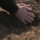 Farmer Hands Holding And Pouring Back Organic Soil - VideoHive Item for Sale