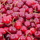 Lots of Red Cherries on the Basket - VideoHive Item for Sale