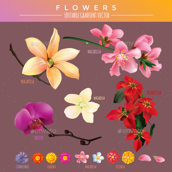 Flowers - Organic Objects Objects