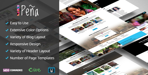 Pena – Charity/Non-Profit WordPress Theme