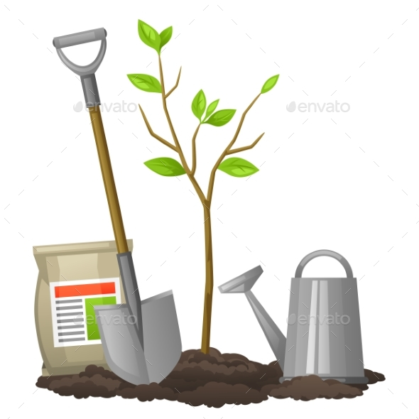 Seedling Fruit Tree with Shovel, Fertilizers and Water - Flowers & Plants Nature