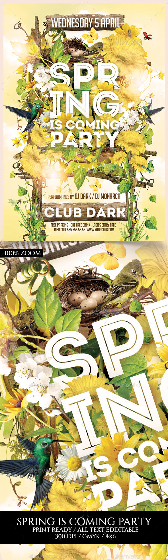 Spring is Coming Party - Events Flyers