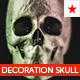 Decoration skull model