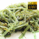 Salad Of Seaweed - VideoHive Item for Sale