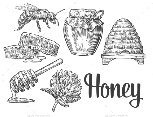 Honey Set - Food Objects