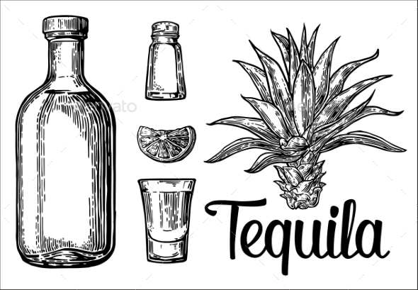 Tequila - Food Objects