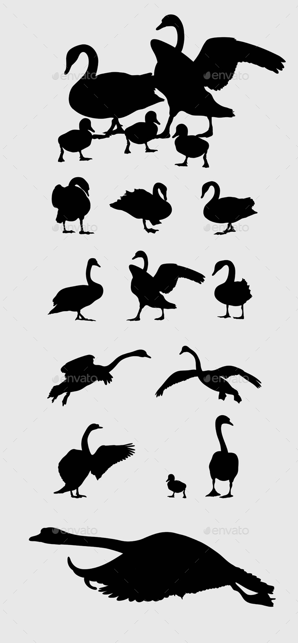 Swan Silhouettes - Animals Characters