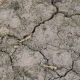 Dry Cracked Earth. - VideoHive Item for Sale