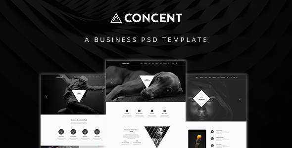 Concent – MultiPurose Business Art Photography PSD Template