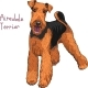 Sketch Dog Airedale Terrier Breed  - GraphicRiver Item for Sale