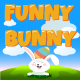 Funny Bunny - CodeCanyon Item for Sale