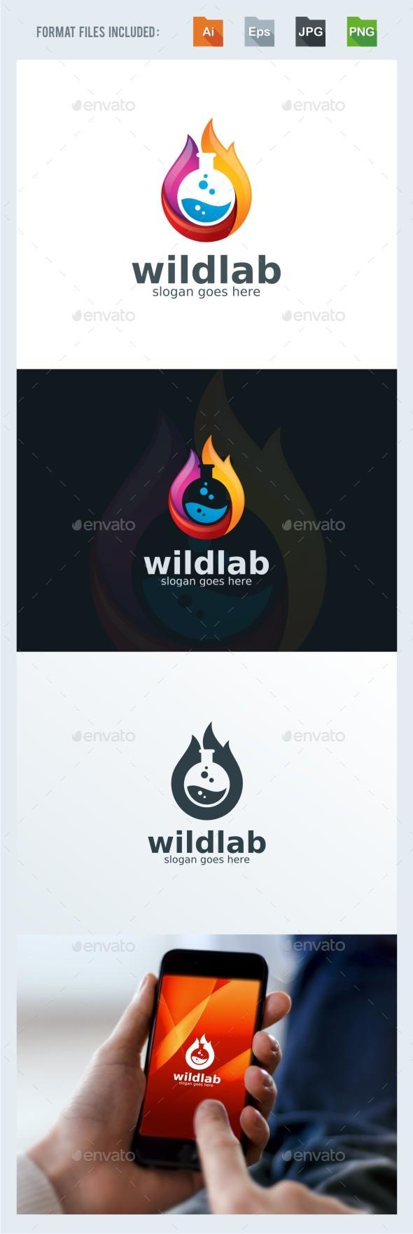 Wild Lab - Flame Logo Template - Symbols Logo Templates