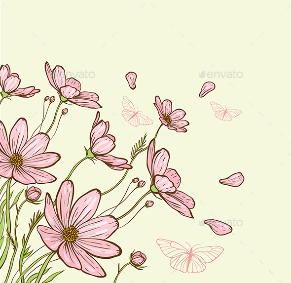 Cosmos Flowers and Butterfly - Flowers & Plants Nature