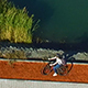 Riding Cycling Along a Lake in the Park - VideoHive Item for Sale